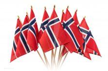 1390271-fotorobinlund-bukett-av-flagg-uttonet